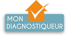 mon-diagnostiqueur-logo-vecto.png