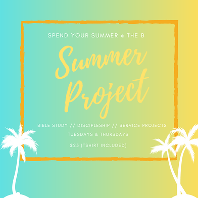 Summer Project-3.png