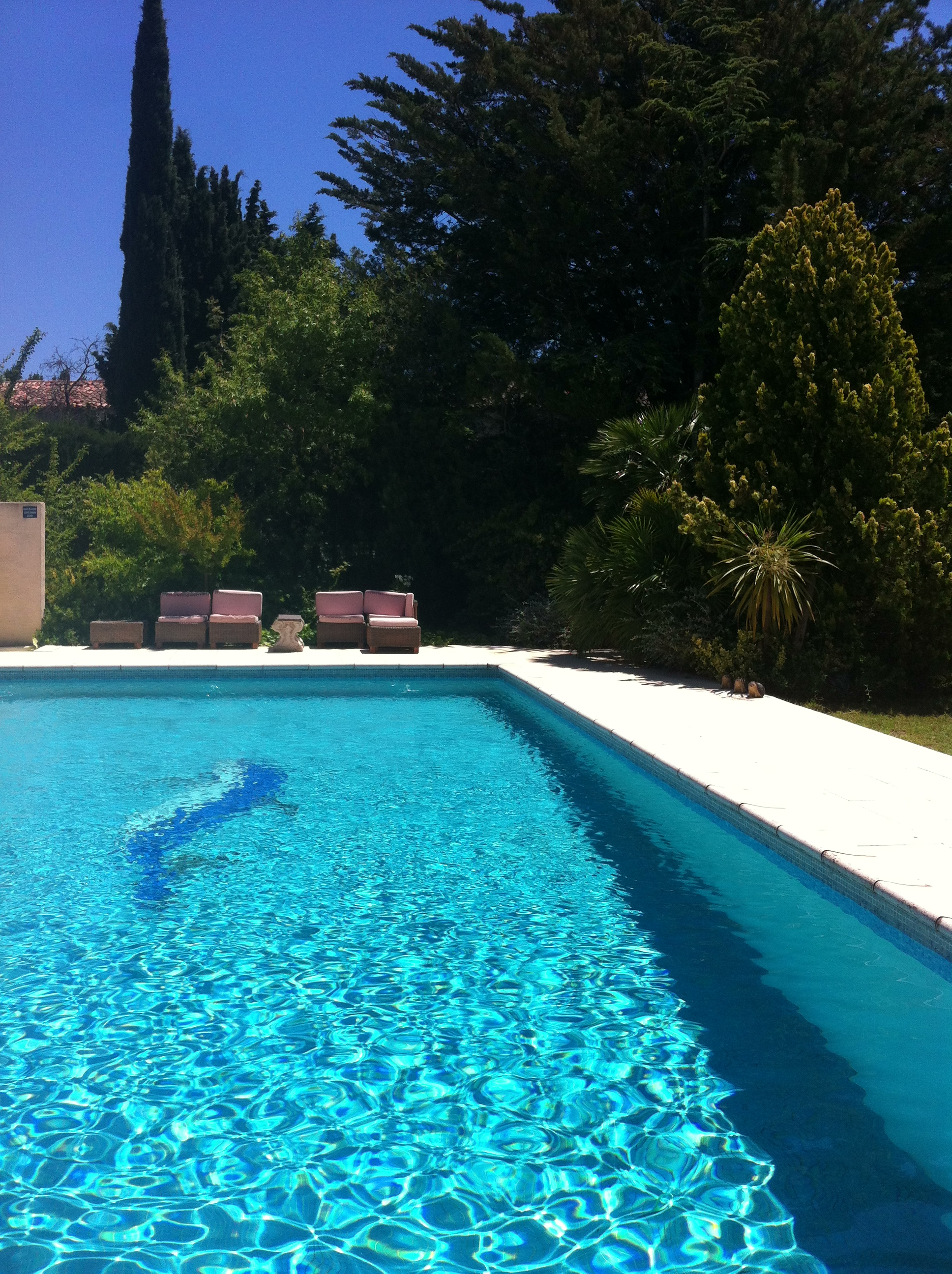 la piscine, our pool, zwembad