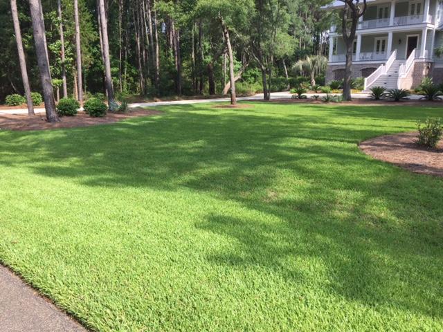 Deep Roots Landscape Management LLC - Home Deep Roots Landscape Management LLC