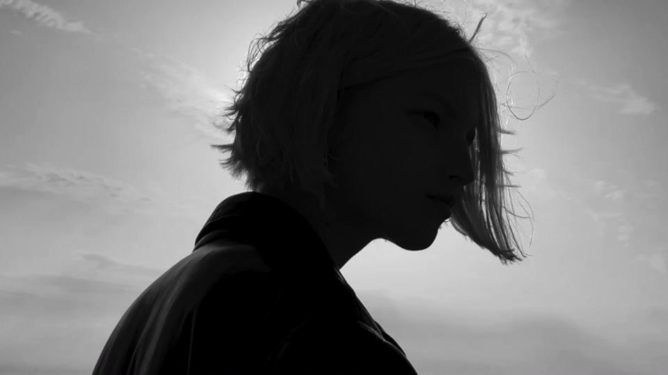 Sebastien GIRAUD Photographe CELINE Hedi Slimane