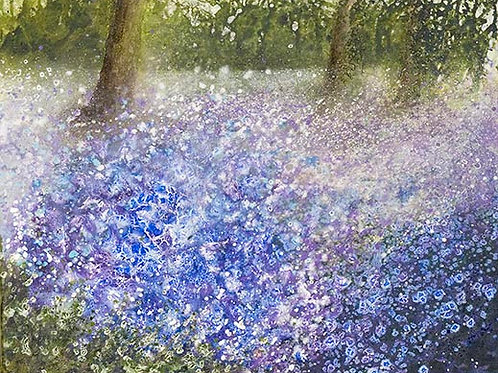 Bluebell Wood print
