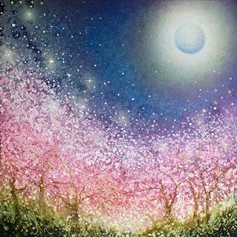 Sakura Night  print