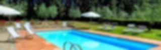 swiiming pool in villa's park