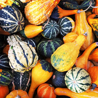 Decorate with Gourds