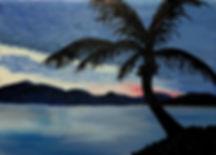 003_tropicalsunset_susiebtw_7_4_17.jpg