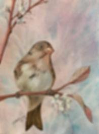 062_winterbird.jpg