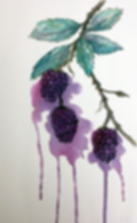 024_juicyblackberries.jpg