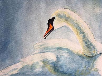 White_Goose_bethanne.jpg