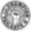 CT-125-RoundOutline-Logo.png