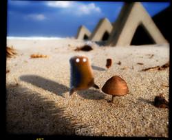 THE BAD BEACH