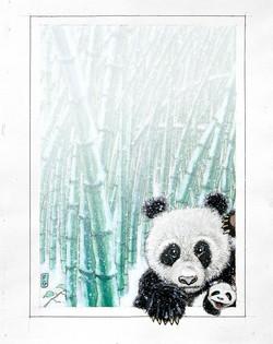 PANDA AND SON.jpg
