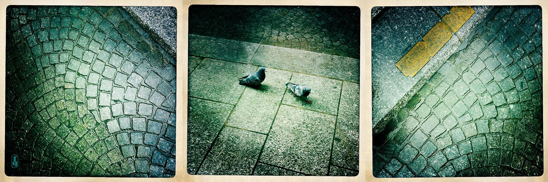 Rue francaise under rain.jpg