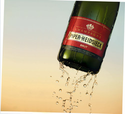 Piper_Champagne_V5B_IsoV2 300_V2