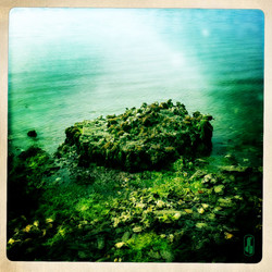 untold coasts.jpg