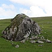 landscape boulder.jpg