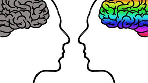 Takuan Soho: The Right Mind and the Confused Mind