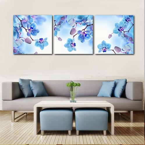 Divine Orchids