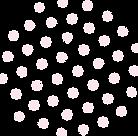 Asset 16_3x.png