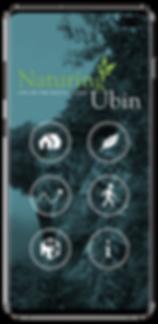Naturing Ubin app Sixmoredays