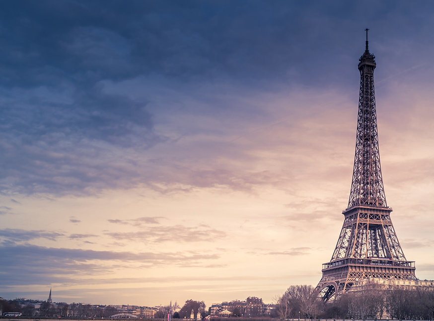 The French Translation Company.jpg