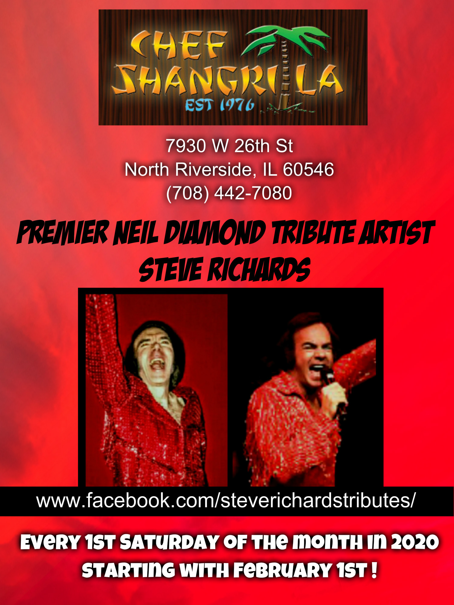 Premier Neil Diamond Tribute Artist Stev