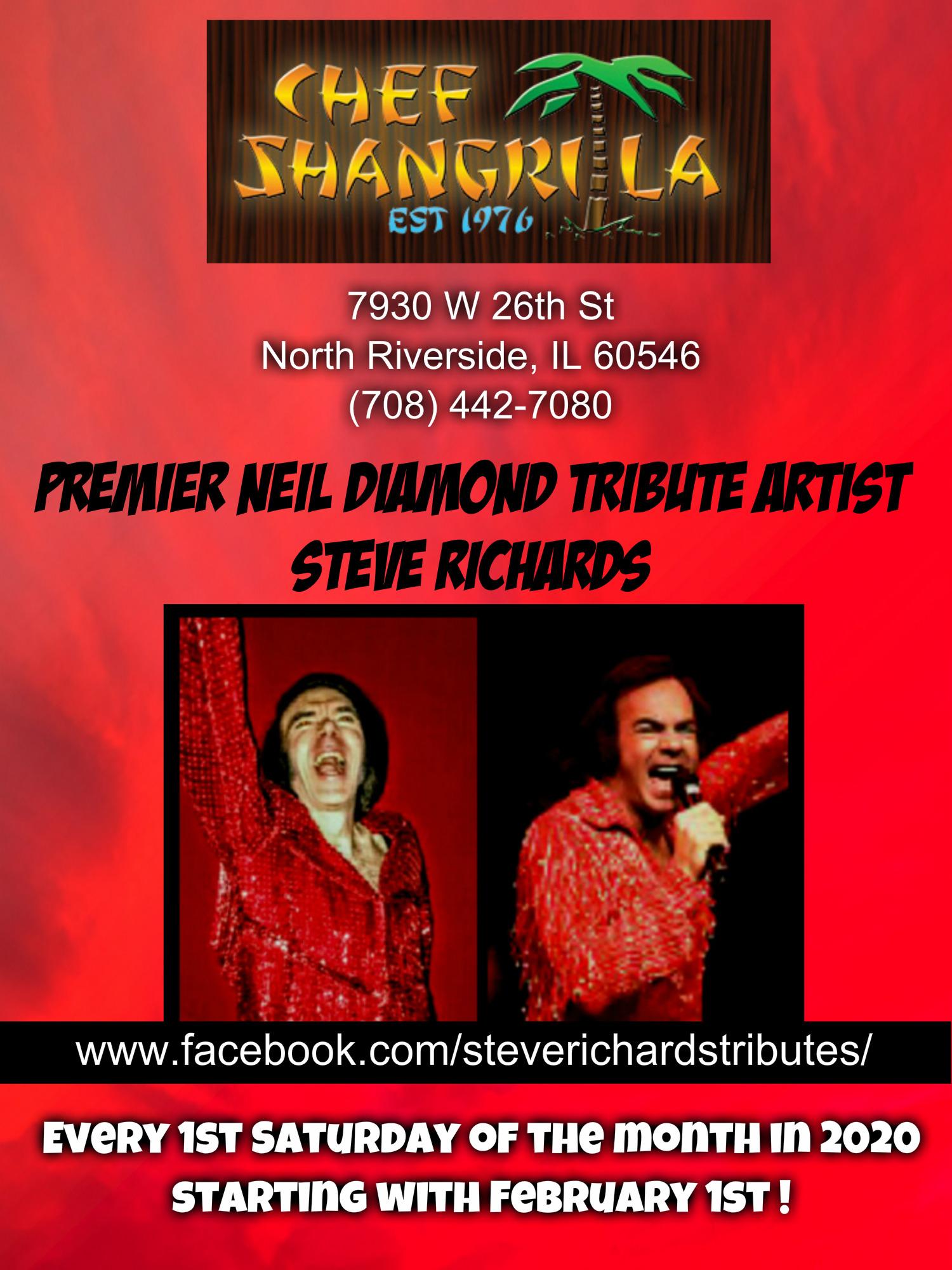 Premier Neil Diamond Tribute Artist Stev