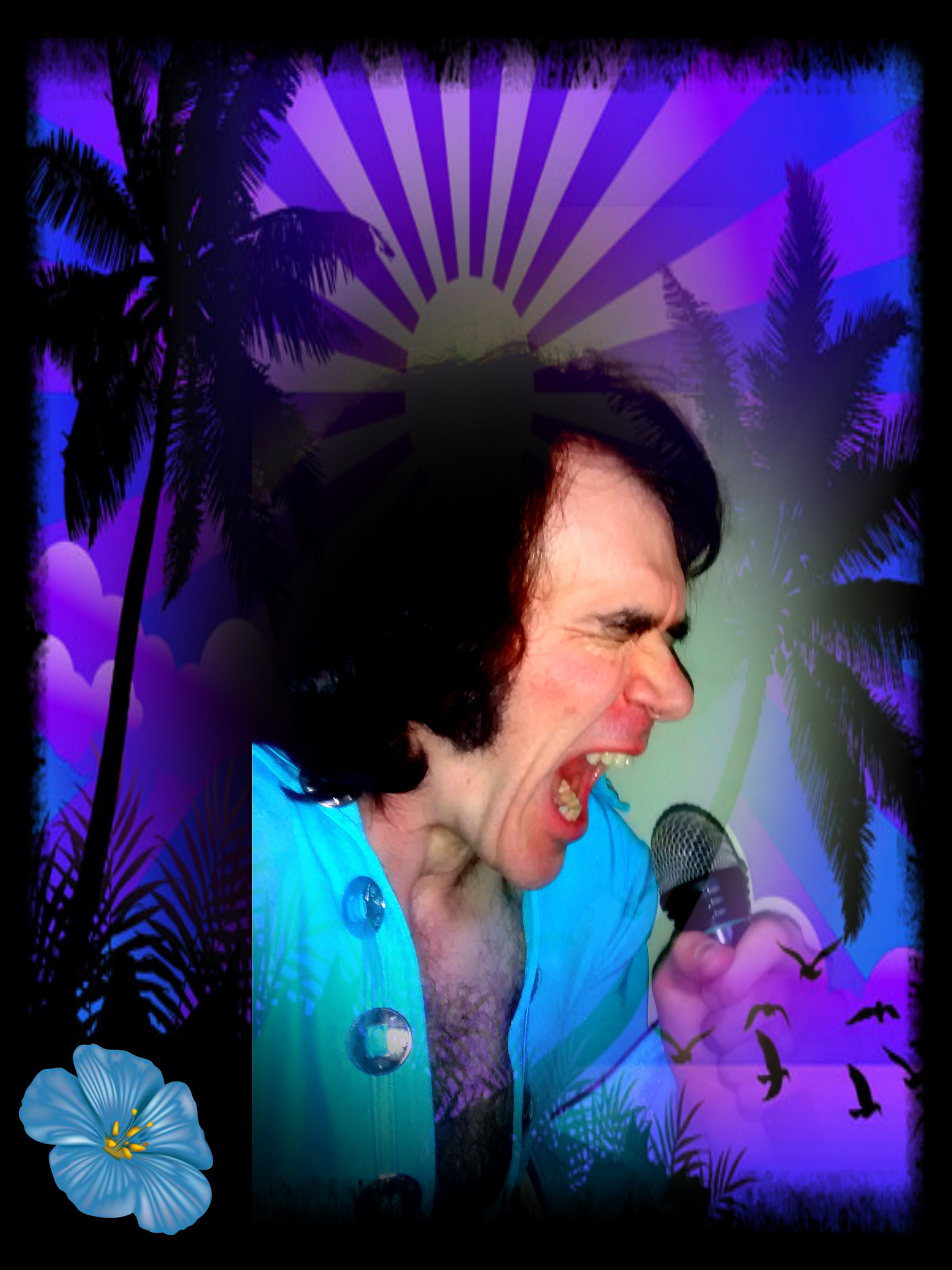 Steve Richards Elvis Tribute Artist