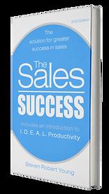 Steven Robert Young, The Sales Success