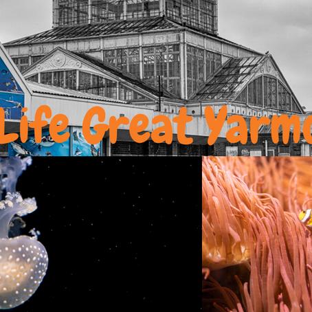Sea Life - Great Yarmouth, UK