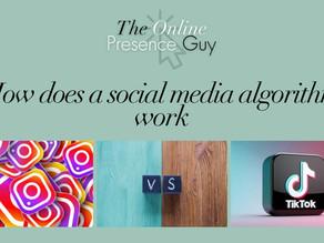 How does a social media algorithm work?