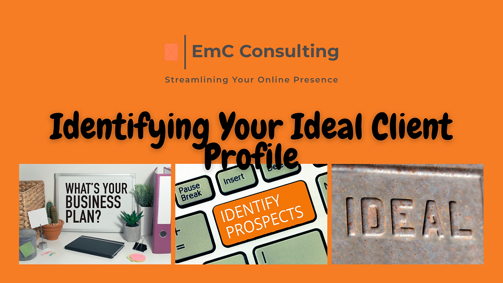 ideal client profile. Identifying your ideal client. What is an ideal client profile. What is an ideal client avatar. Ideal client avatar. Business coach. Business mentor.