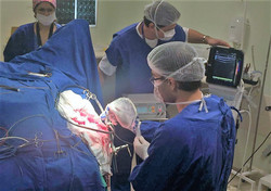 Cirurgia com US Transoperatória