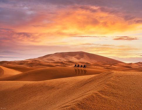sahara_sunrise2.jpg