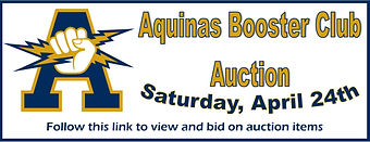 Auction Banner Image.jpg