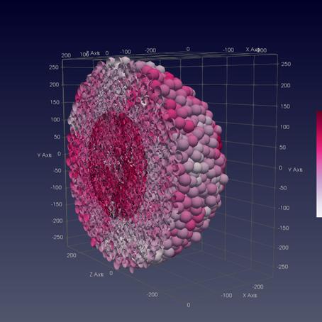 BioDynaMo: Making sense of complexity in biology