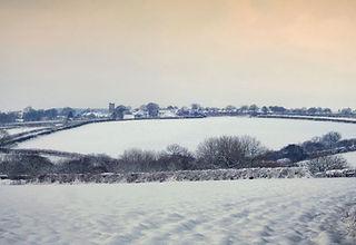 2. Snowy Woolsery.JPG.jpg