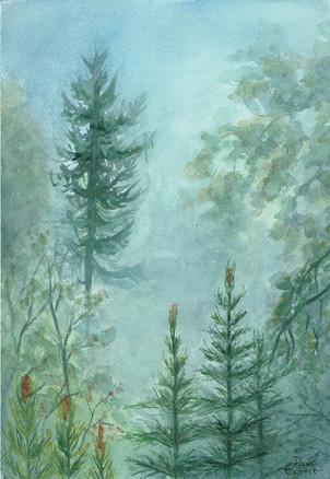 Dans les montagnes dans le brouillard