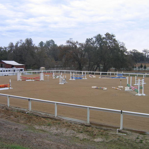 Blue Water Farms Rescue CA Best Horse Riding Facility