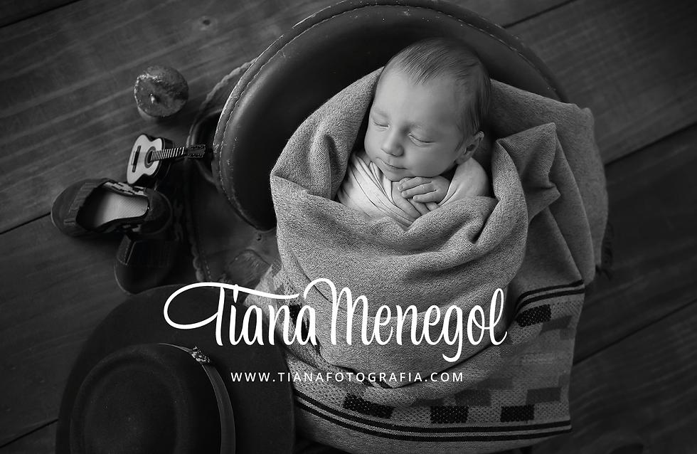 Tiana-Menegol-logo-2021-Behance_01.png