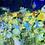 """Thumbnail: """"Printemps"""" 70x70 cm"""