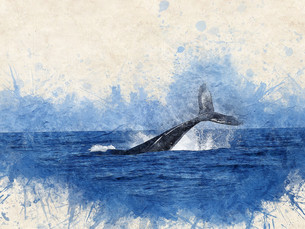 How Whales Change the Climate