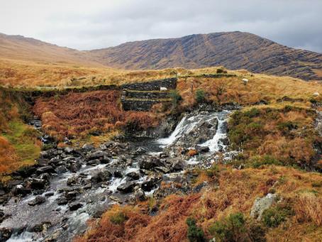 Ireland Day 3 - Glengarriff to Killarney