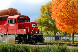 Red Wing Train