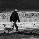 Man Walking Dog in Timoleague