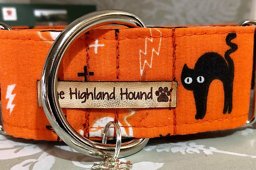 "Halloween 1.5"" Martingale Collar"
