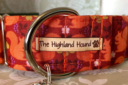 "Orchard Squirrels 1.5"" Martingale Collar"