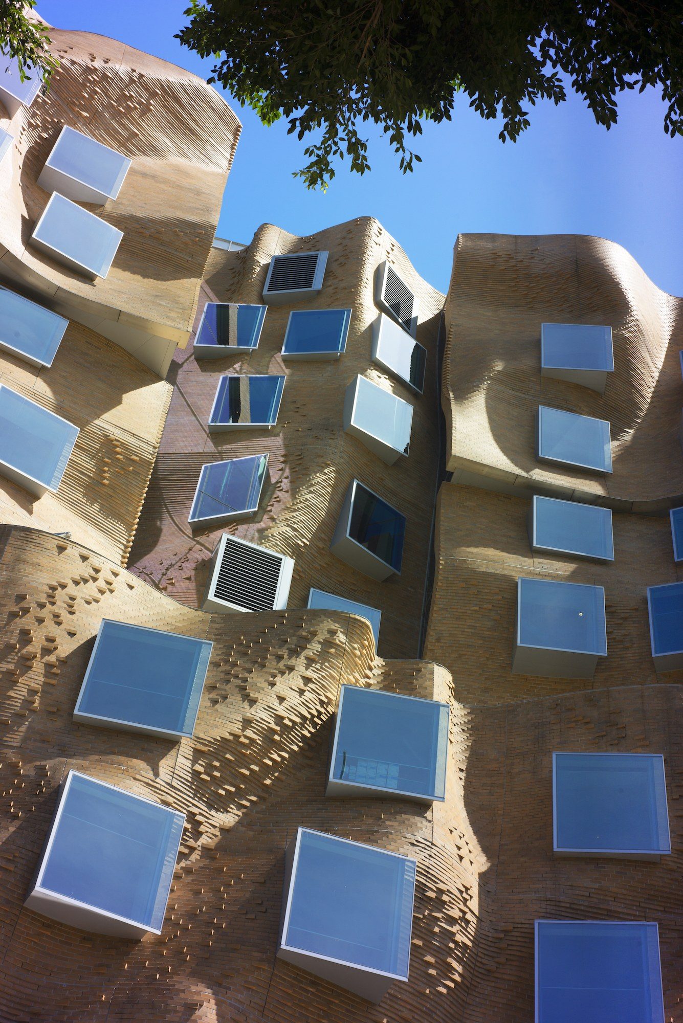gehry 7
