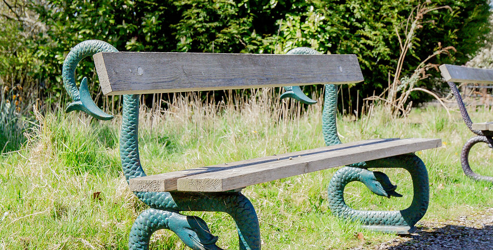 An English 19th Century Patinated Cast Iron and Wooden Bench