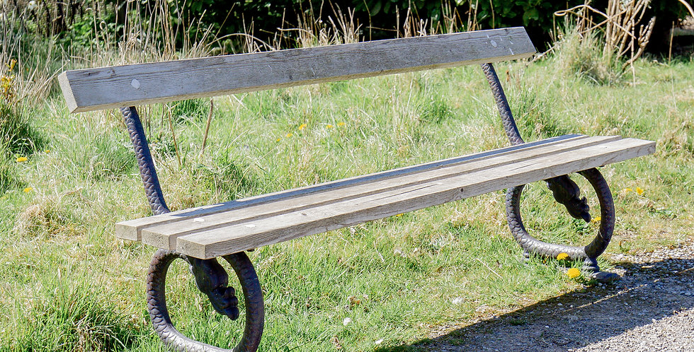 An English 19th Century Patinated Cast Iron and Wooden Bench circa 1860